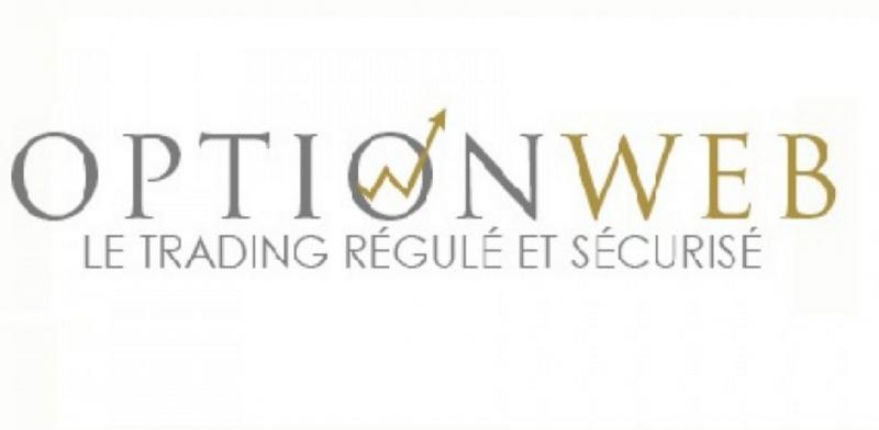 Logo option web