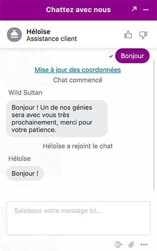 wild sultan support client chat